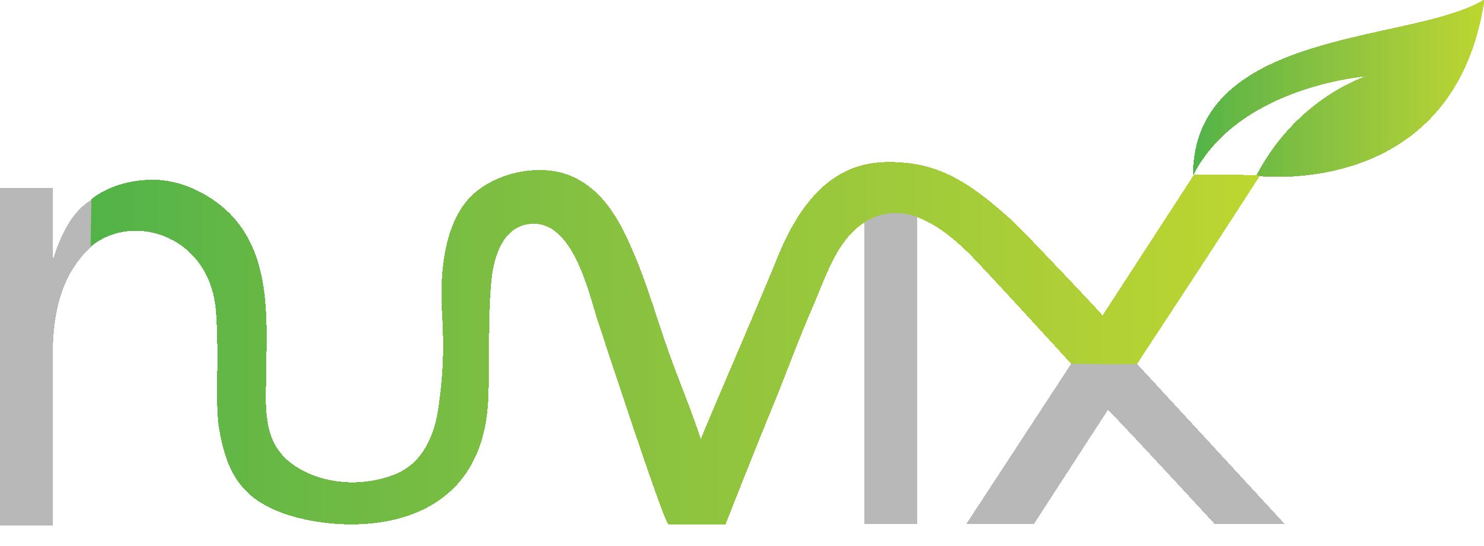Ruvix Technology